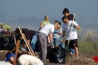 Wetlands Restoration @ Bolsa Chica Conservancy Interpretive Center | Huntington Beach | California | United States