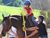 Shadow Hills Riding Club Volunteer Orientation Part 1 @ Shadow Hills Riding Club  | Los Angeles | California | United States
