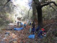 Volunteer: Starr Ranch Sanctuary Restoring Riparian Habitats @ Starr Ranch Sanctuary | Trabuco Canyon | California | United States