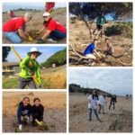 Outdoor Volunteer Day: Alta Vicente @ Alta Vicente Reserve (Meet at St Paul's Lutheran Church) | Rch Palos Vrd | California | United States