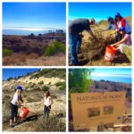 Outdoor Volunteer Day: Portuguese Bend Reserve @ Portuguese Bend Reserve | Rancho Palos Verdes | California | United States