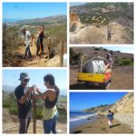 Rapid Response Team @ Portuguese Bend Reserve | Rancho Palos Verdes | California | United States